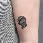 Small shell tattoo by Roald Vd Broek