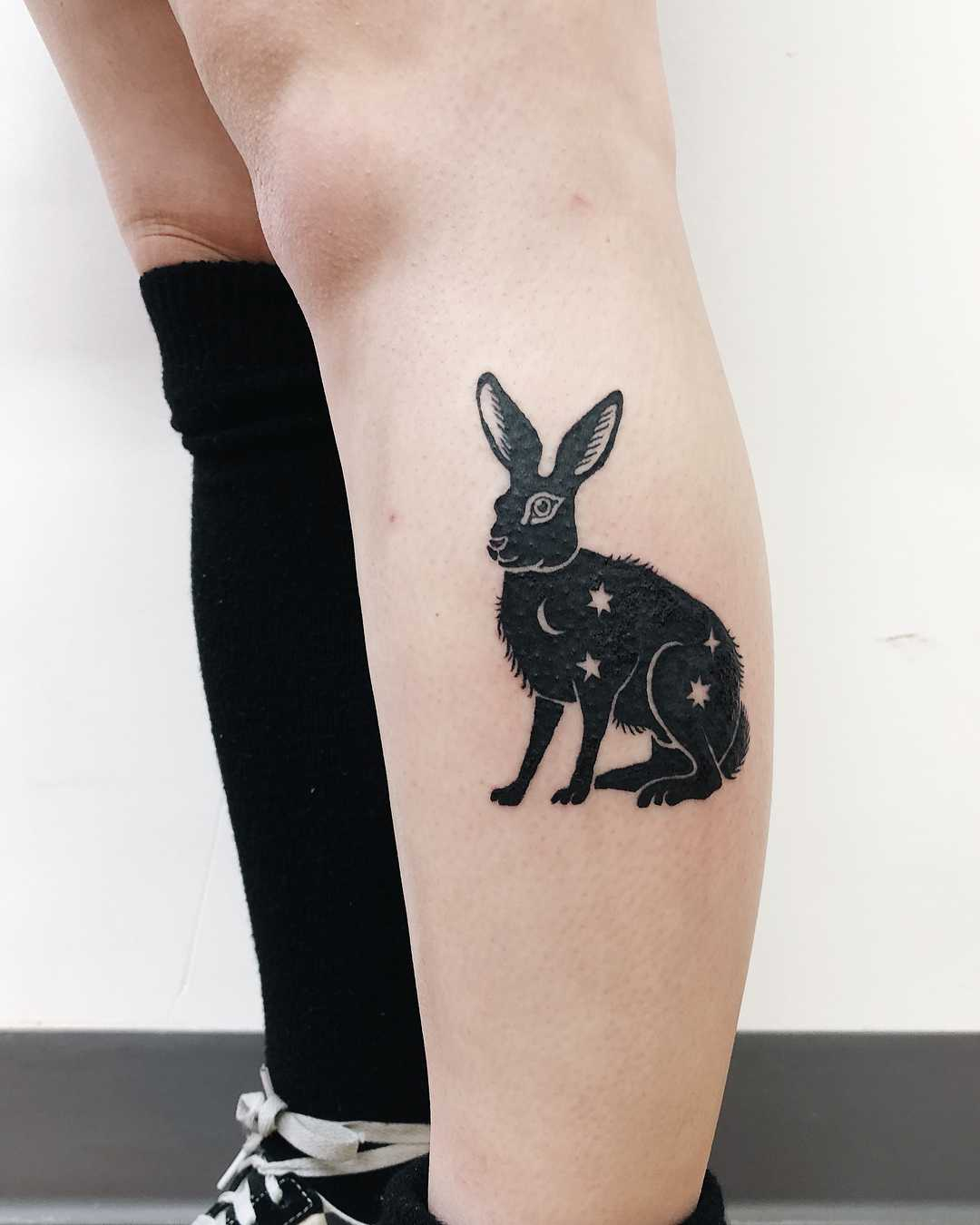 A shadow rabbit filled with sky