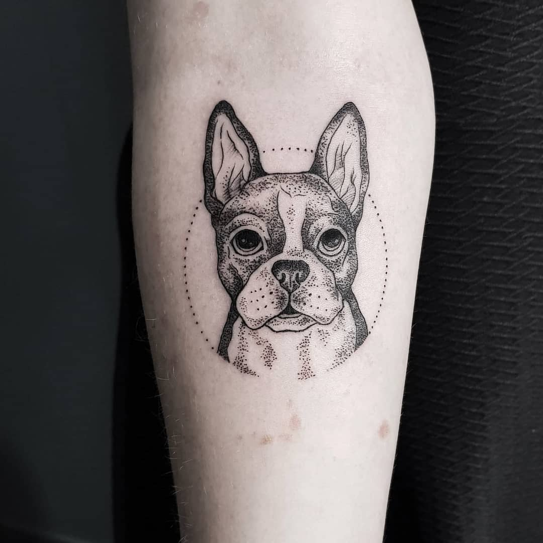 Bulldog tattoo on the forearm