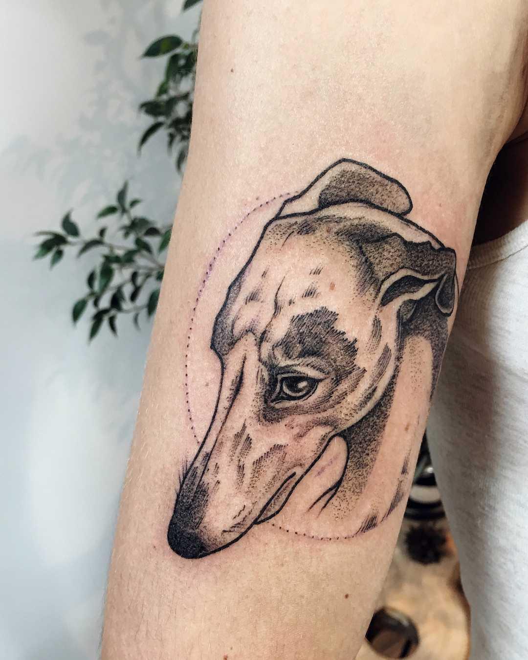 Dog portrait tattoo by Sasha