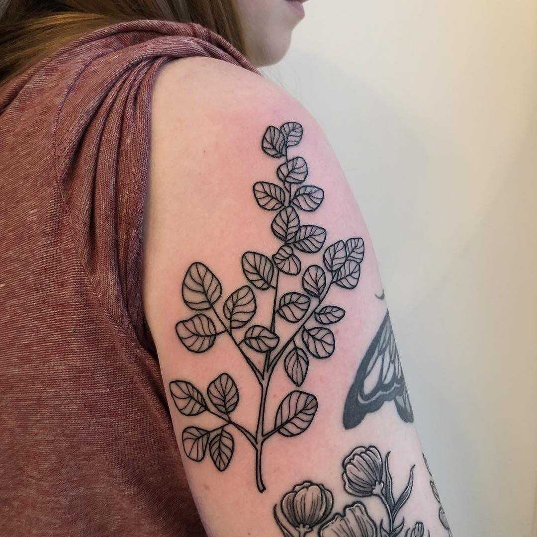 Eucalyptus ️tattoo on the arm