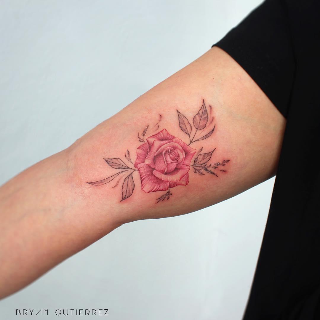 Little rose by Bryan Gutierrez