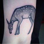 Lovely deer tattoo by Susanne König