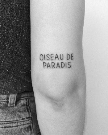 Oiseau de paradis tattoo