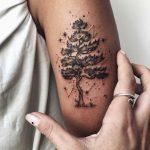 Pine tree tattoo by Sasha Tattooing