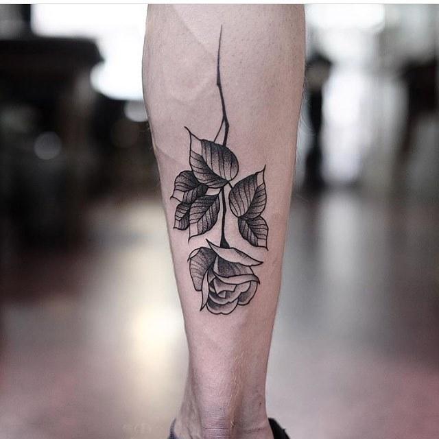 Rose on the calf by Jonas Ribeiro