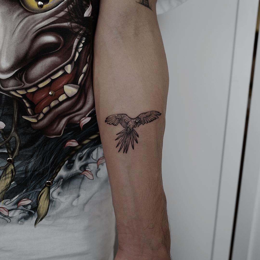 Small parrot tattoo
