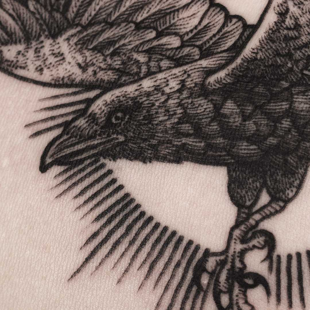 Blackwork crow tattoo