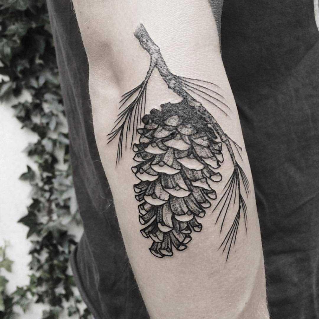 Conifer cone tattoo by Roald Vd Broek