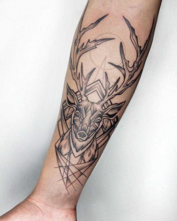 Deer forearm by Sasha Kiseleva