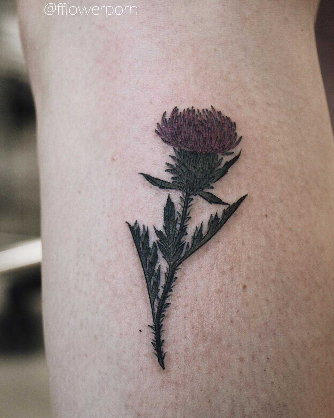 Little thistle tattoo
