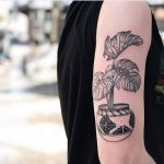 Monstera pot tattoo on the arm