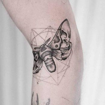 Moth by Dogma Noir
