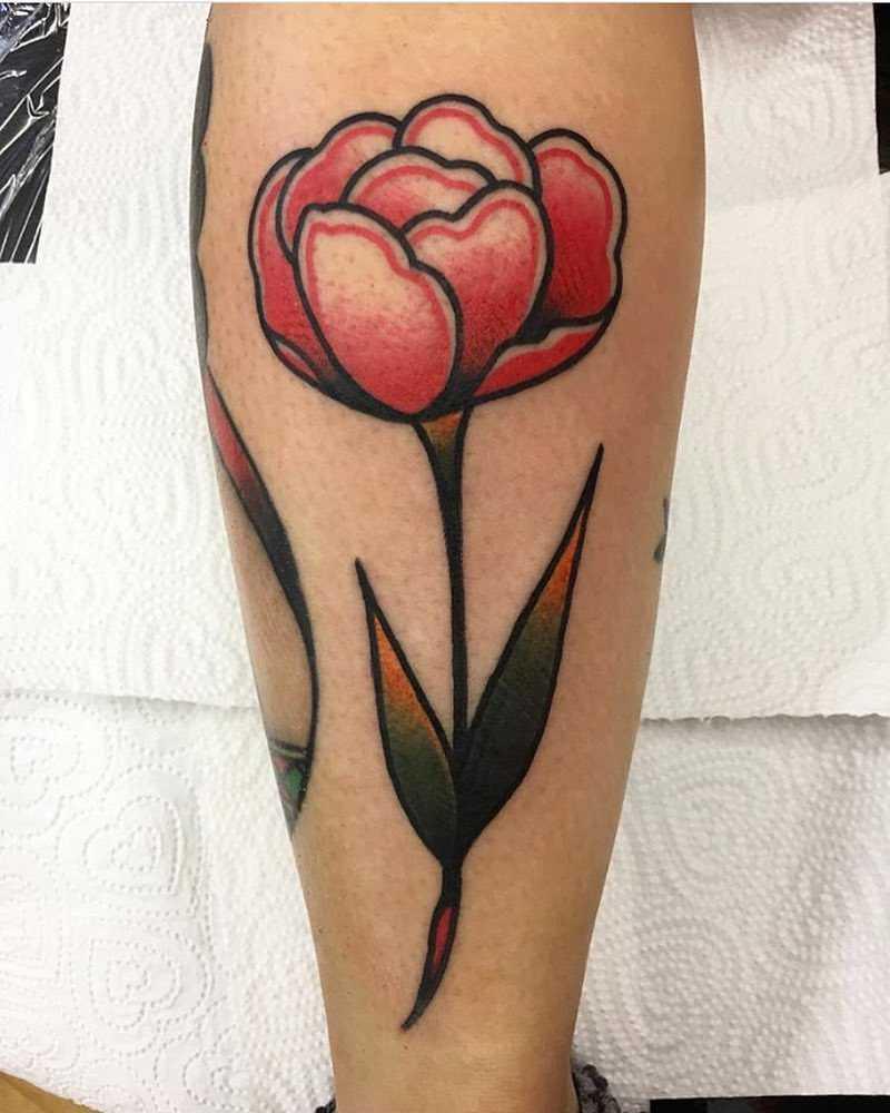 Traditional rose by Jeroen Van Dijk