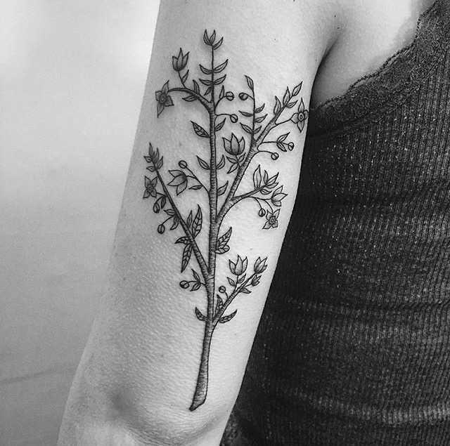 Tree tattoo on the left triceps