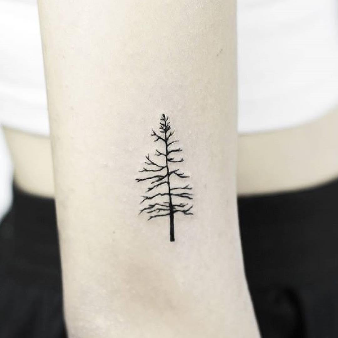 Tiny tree by Stela TX