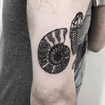 Ammonite tattoo by Deborah Pow