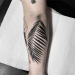 Black fern leaf