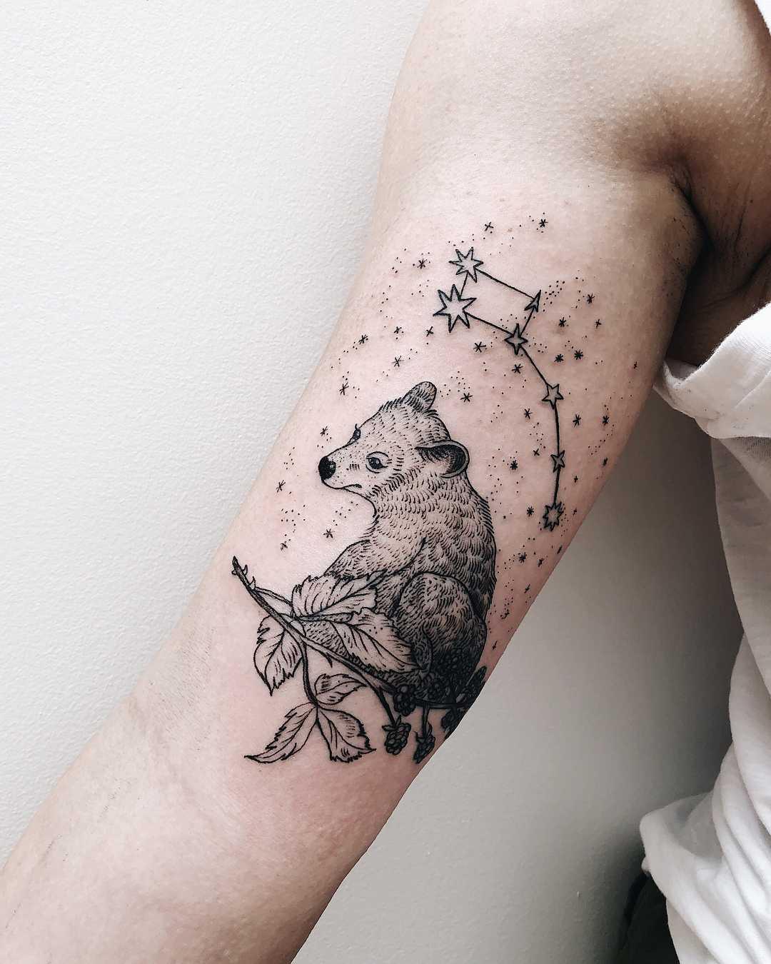 Little dipper and bear tattoo