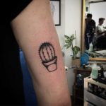 Small cacti on the arm