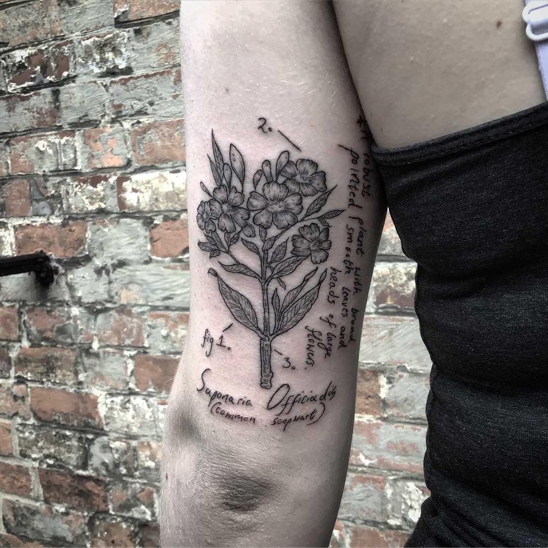 Witchy botanical Soapwart tattoo
