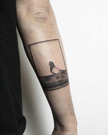 Beautiful pigeon tattoo by tattooist Spence @zz tattoo
