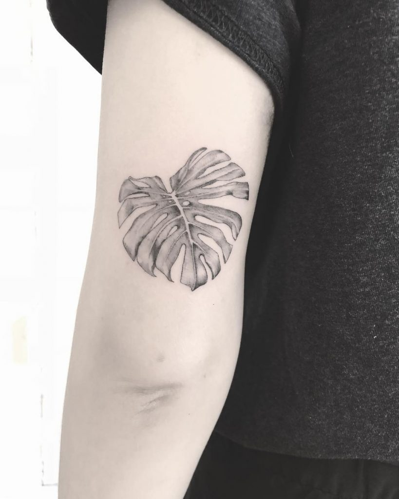 Black and grey Monstera leaf by Annelie Fransson