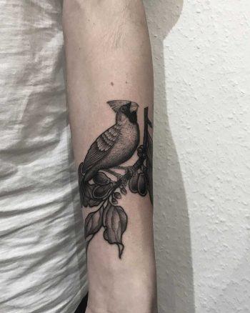 Cardinal bird by tattooist Spence @zz tattoo