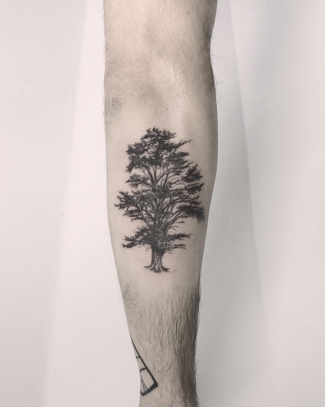 Lebanese cedar tree tattoo by Annelie Fransson