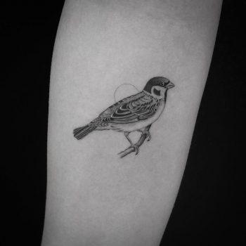 Sparrow tattoo by Jakub Nowicz
