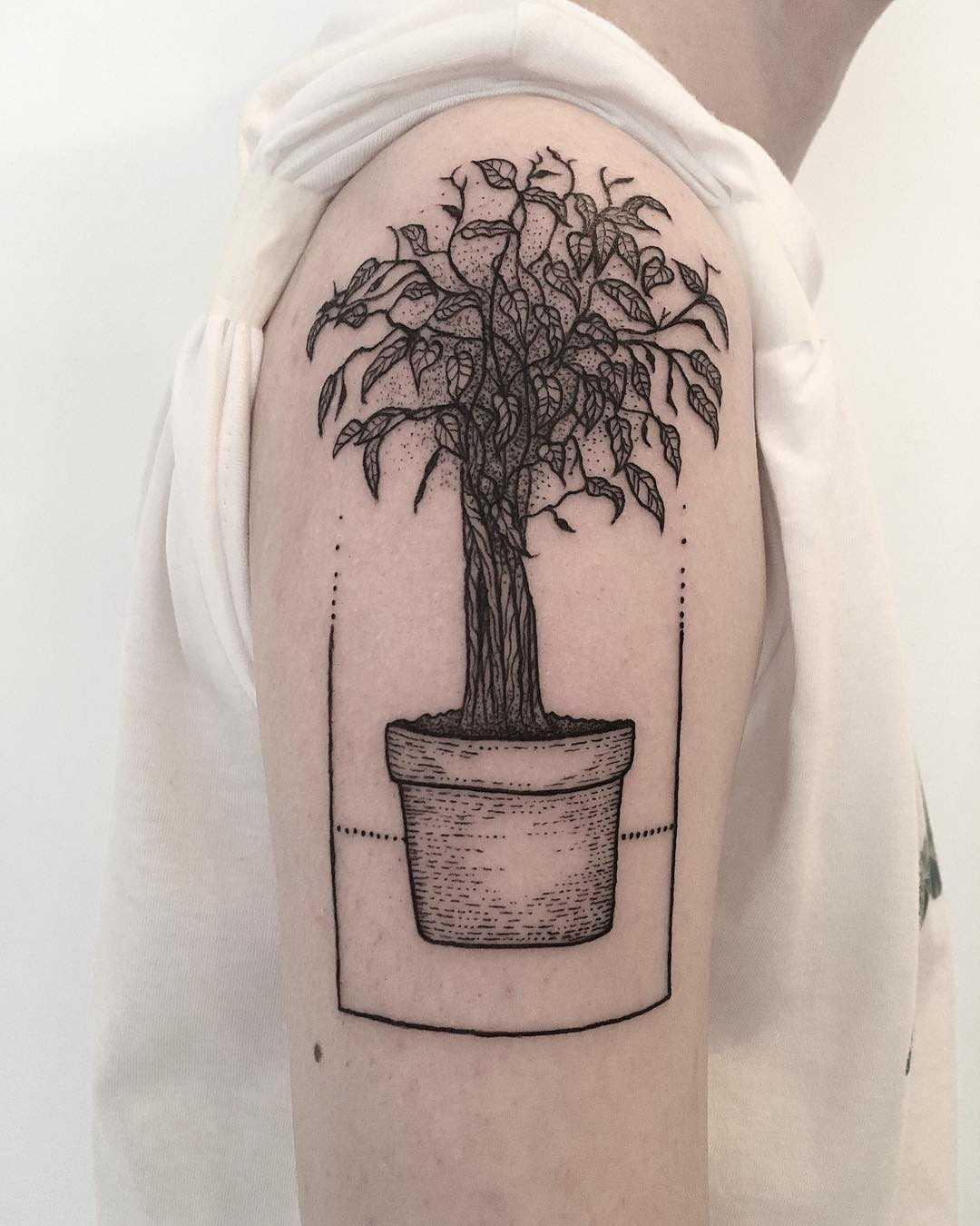 Ficus tattoo by tattooist Spence @zz tattoo