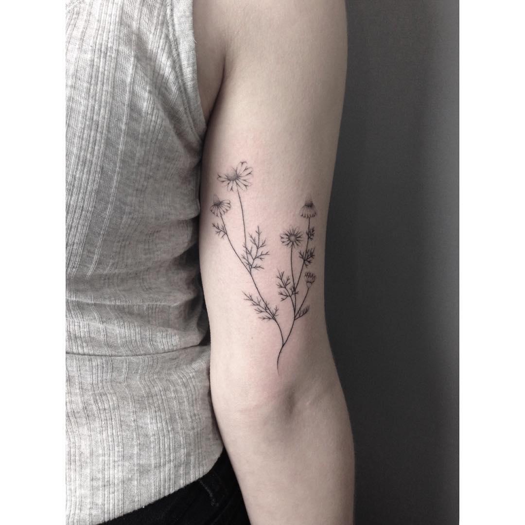 Hand-poked chamomile tattoo by Lara Maju