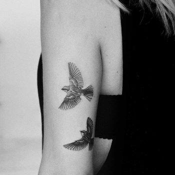 Sparrow tattoo by Amanda Piejak