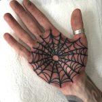 Spiderweb palm by Luke.A.Ashley