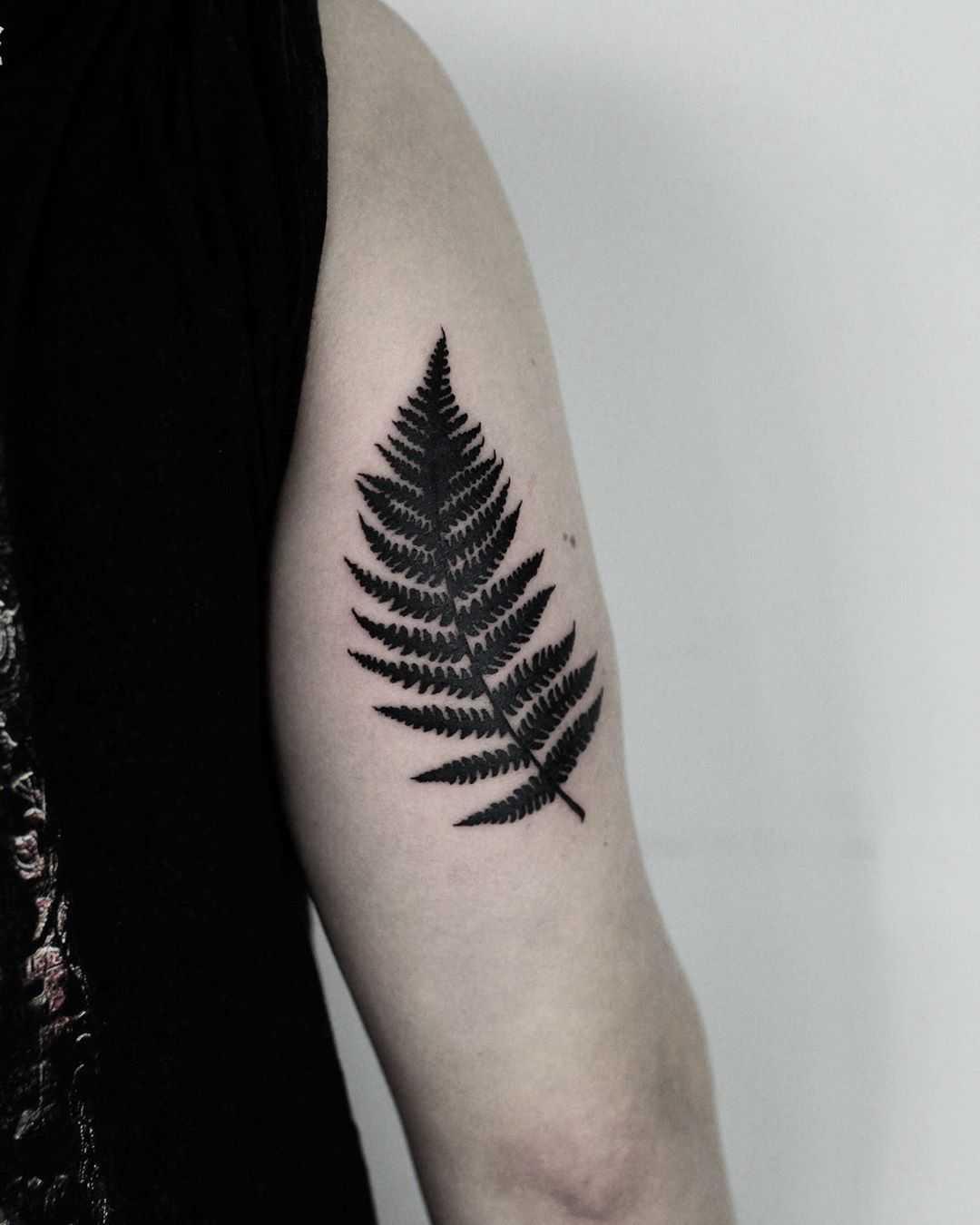 Black fearn leaf by tattooist Spence @zz tattoo
