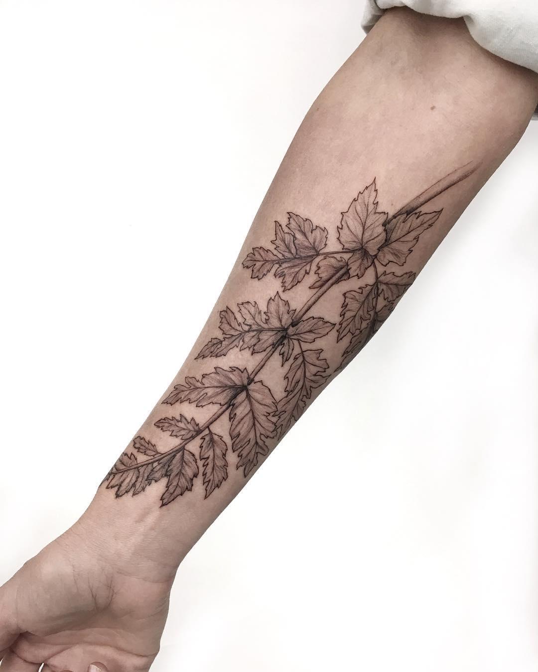 Delicate fern by Gianina Caputo