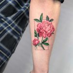 Lovely peonies by Eden Kozo