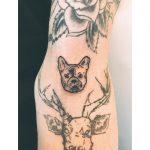 Mini French Bulldog by Zaya Hastra