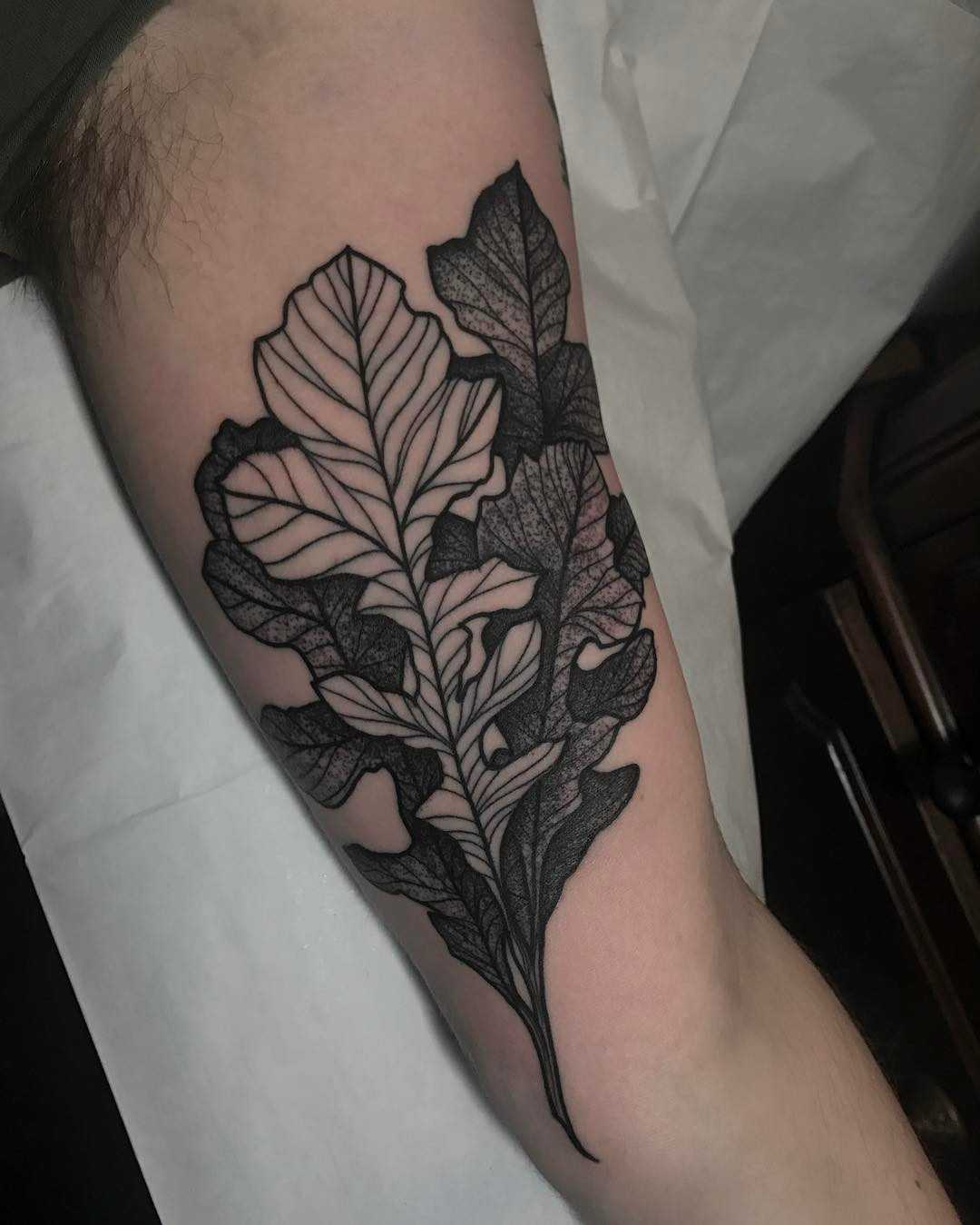Oak leaves by Tine DeFiore