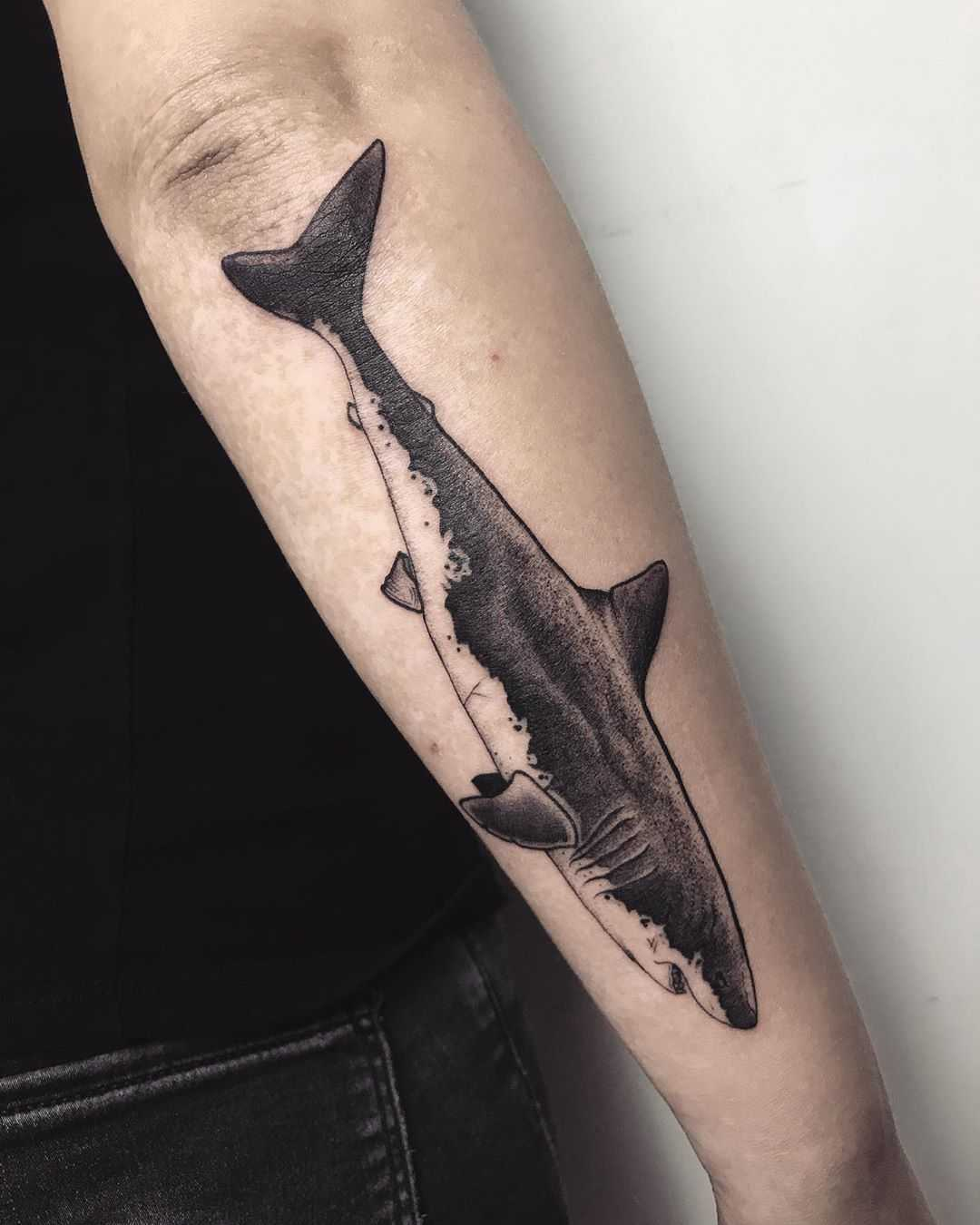 Shark on a forearm by tattooist Spence @zz tattoo