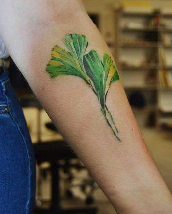 Watercolor ginkgo leaves by Mavka Leesova