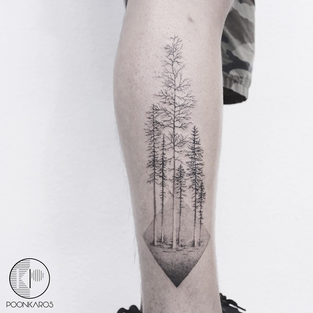 Amazing trees by Karry Ka-Ying Poon