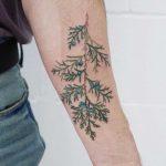 Juniper branch tattoo by tattooist picsola