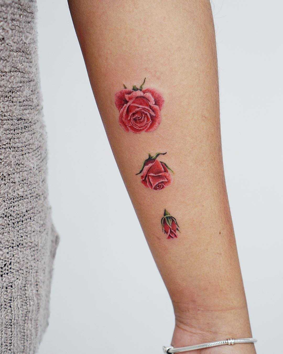 Roses by tattooist picsola