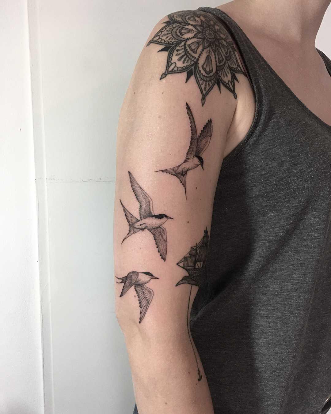 Terns by tattooist Spence @zz tattoo