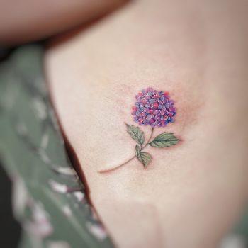 Hydrangea by tattooist G.NO