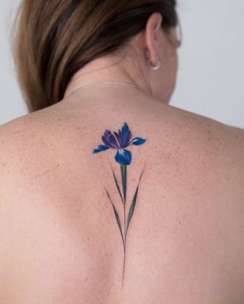 Iris flower by Rey Jasper