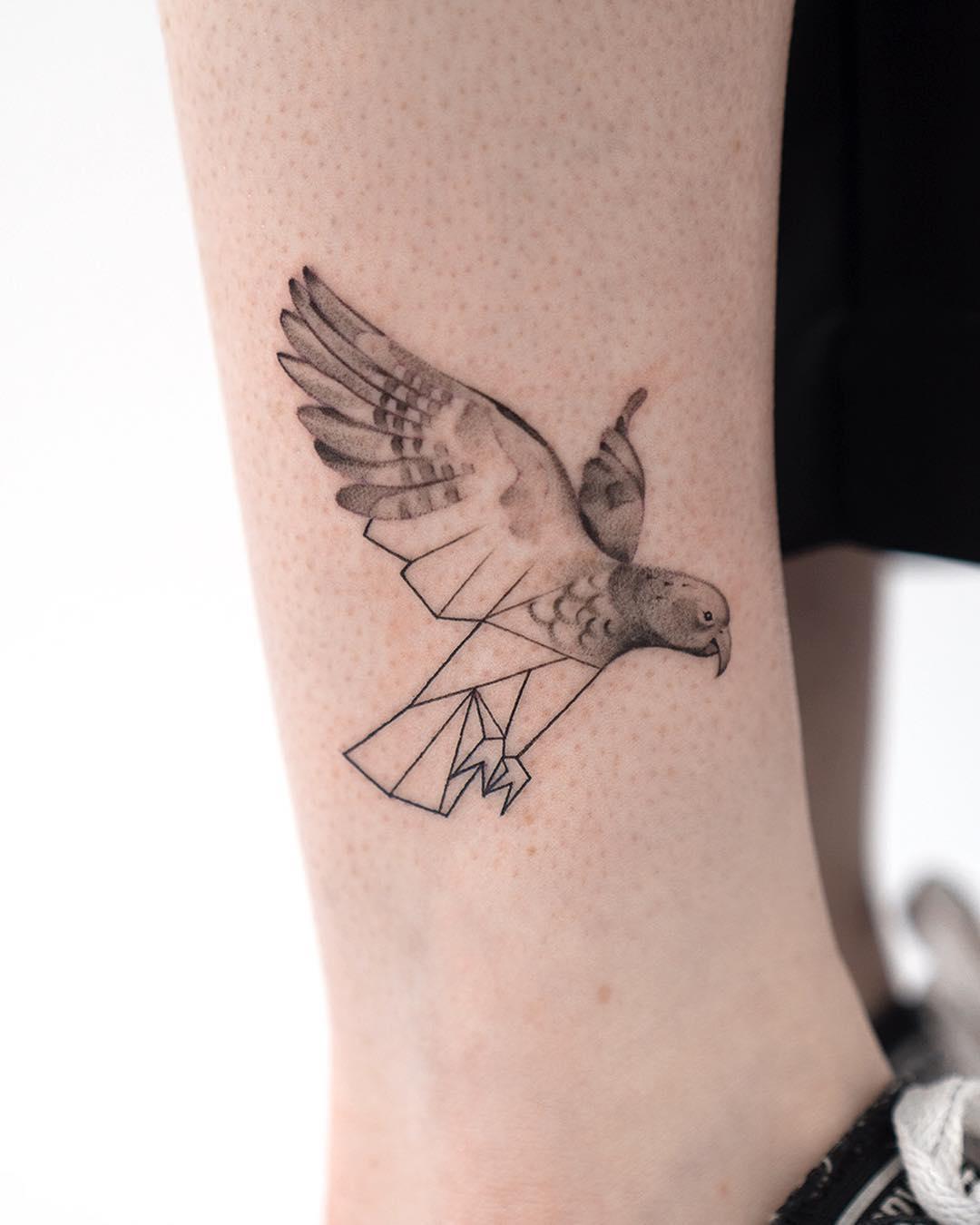 The New Zealand Kākā bird by Rey Jasper