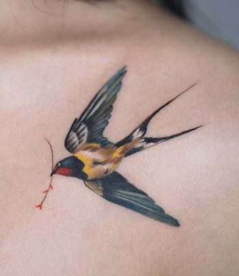 A perfect swallow by Rey Jasper