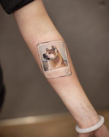 Akita memories by tattooist Chenjie